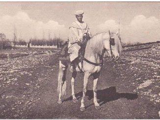 فارس امازيغي
