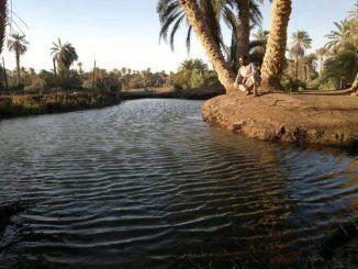 واحة مرادة في ليبيا