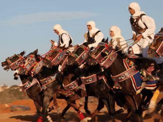 الفروسية الليبية
