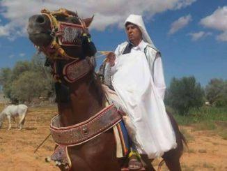 حصان ليبي